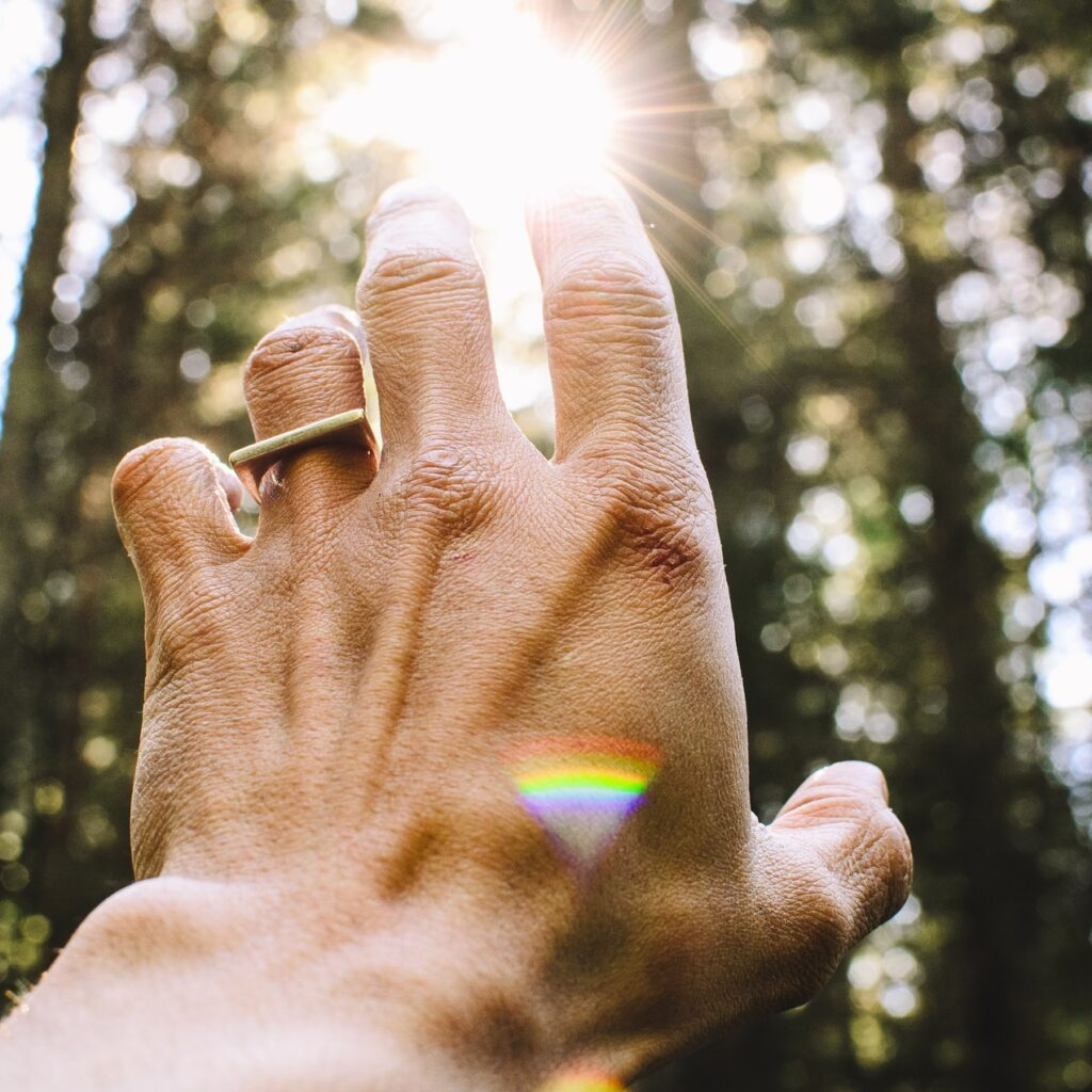 Hand reaches towards sun in forest