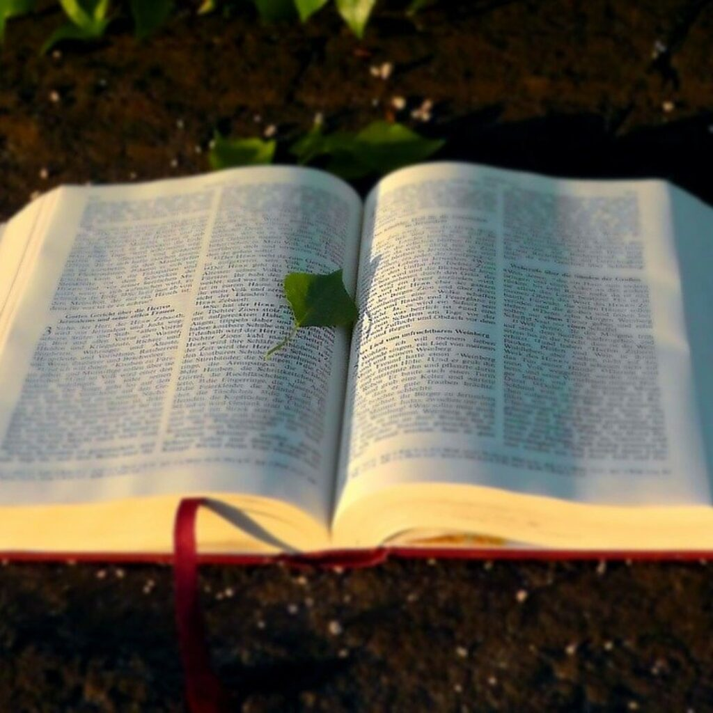 Obeying the word of the Bible - 10 Reasons For Obeying God